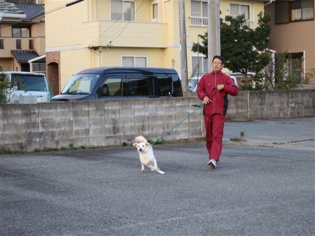 f:id:yasukazu01:20131027212616j:image