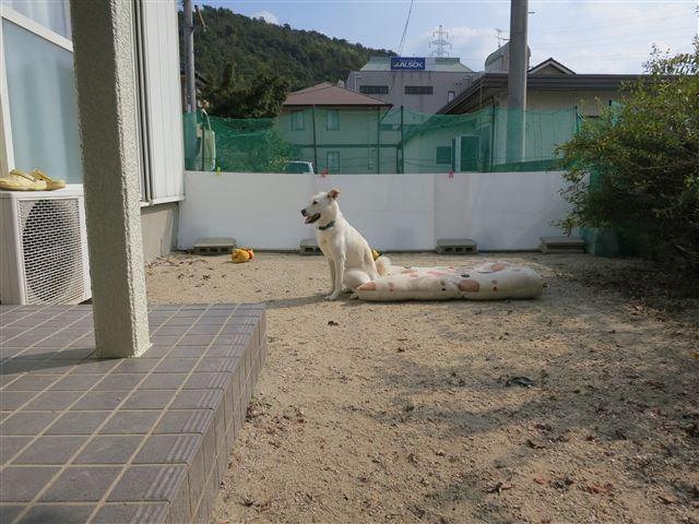 f:id:yasukazu01:20131030203533j:image