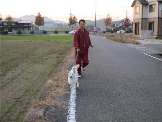 f:id:yasukazu01:20131031221024j:image