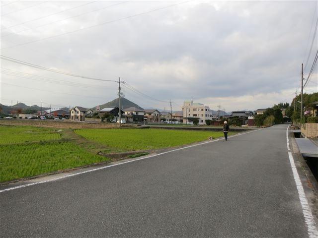 f:id:yasukazu01:20131112211551j:image