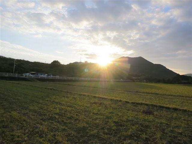 f:id:yasukazu01:20131112212056j:image