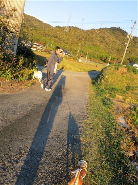 f:id:yasukazu01:20131113172055j:image