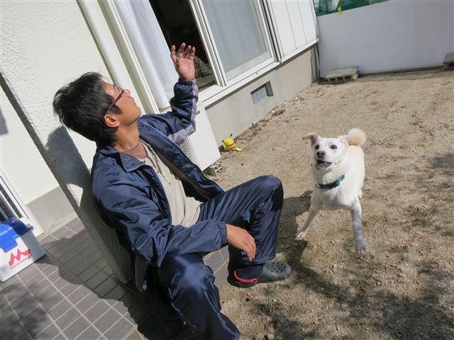 f:id:yasukazu01:20131114212341j:image