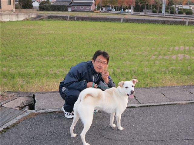 f:id:yasukazu01:20131115195143j:image