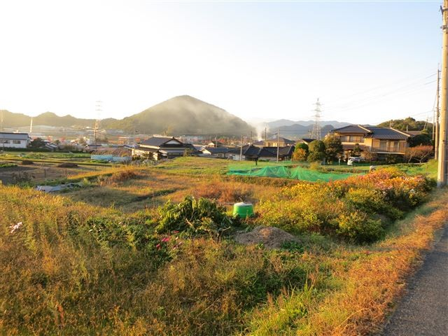 f:id:yasukazu01:20131115200027j:image