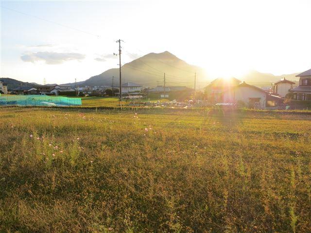 f:id:yasukazu01:20131115200118j:image