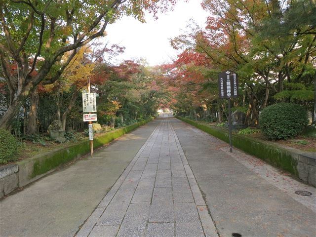 f:id:yasukazu01:20131116195538j:image