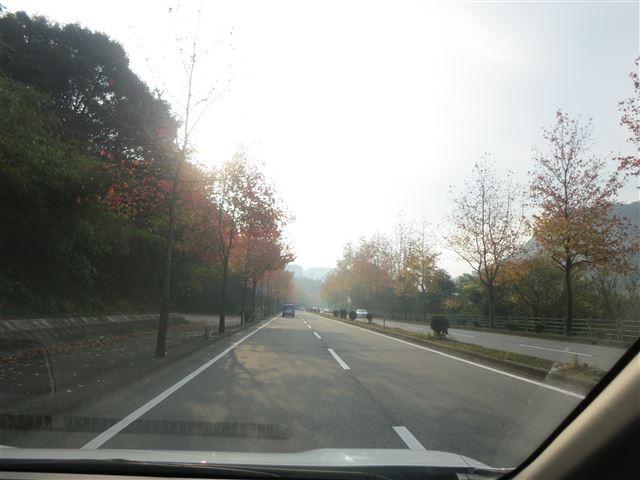 f:id:yasukazu01:20131116195815j:image