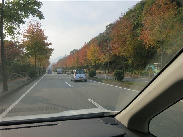 f:id:yasukazu01:20131116195852j:image
