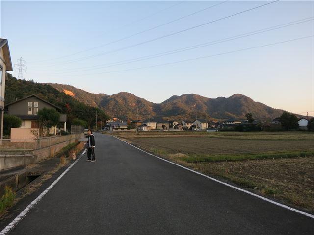 f:id:yasukazu01:20131116202143j:image
