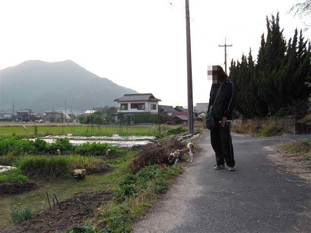 f:id:yasukazu01:20131116202501j:image