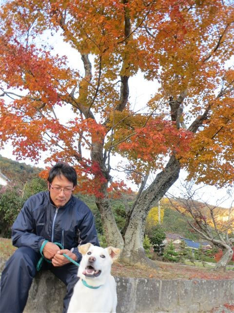 f:id:yasukazu01:20131122172331j:image