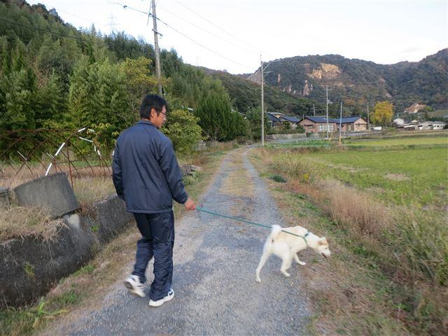 f:id:yasukazu01:20131124222853j:image