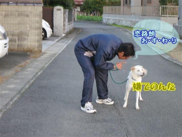 f:id:yasukazu01:20131124223045j:image