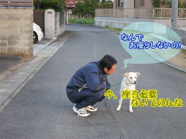 f:id:yasukazu01:20131124223220j:image