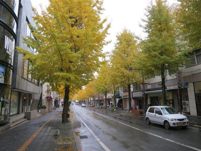 f:id:yasukazu01:20131128213217j:image