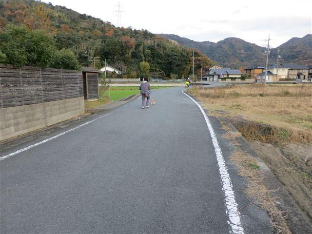 f:id:yasukazu01:20131129200440j:image