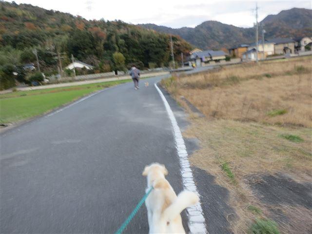 f:id:yasukazu01:20131129200634j:image