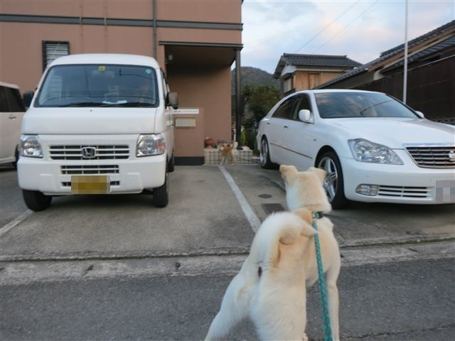 f:id:yasukazu01:20131129201048j:image