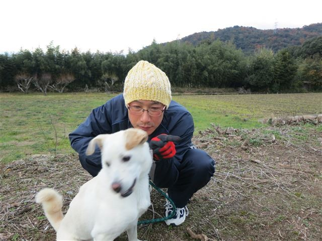 f:id:yasukazu01:20131129201051j:image