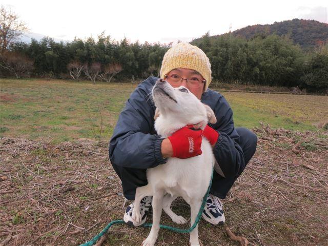f:id:yasukazu01:20131129201052j:image