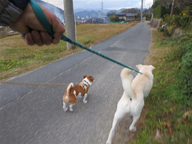 f:id:yasukazu01:20131203223429j:image