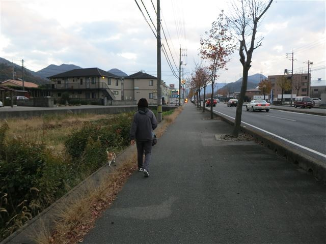 f:id:yasukazu01:20131203223540j:image
