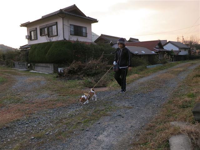 f:id:yasukazu01:20131207222941j:image