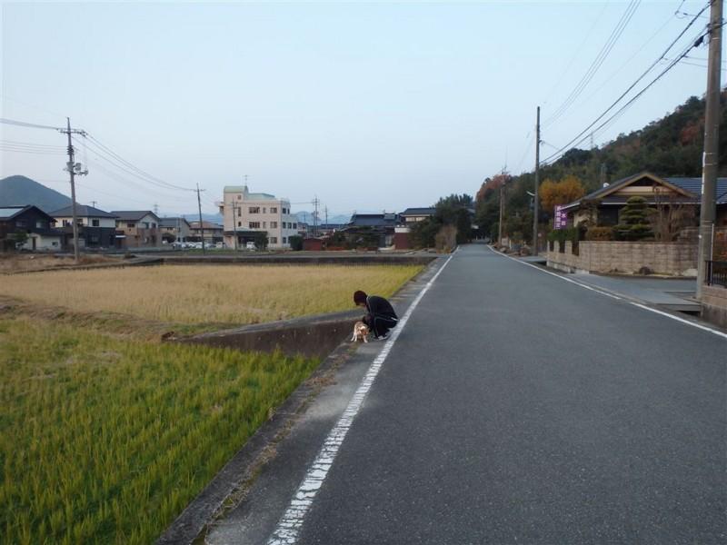 f:id:yasukazu01:20131209224752j:image