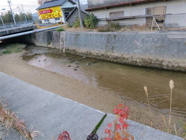 f:id:yasukazu01:20131209225343j:image
