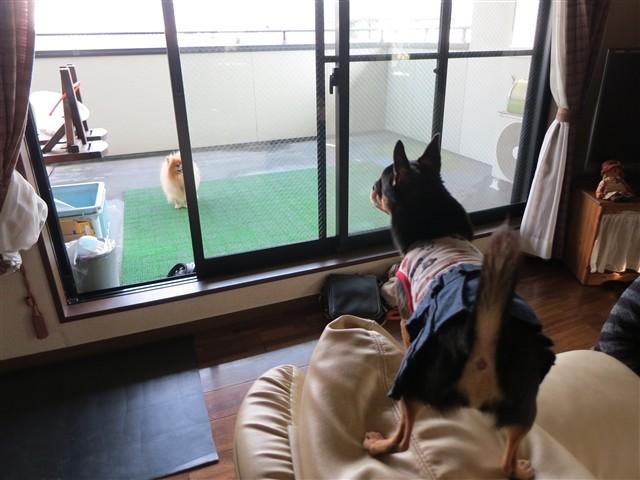 f:id:yasukazu01:20131211223454j:image