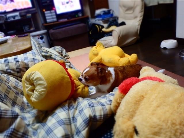 f:id:yasukazu01:20131215230056j:image