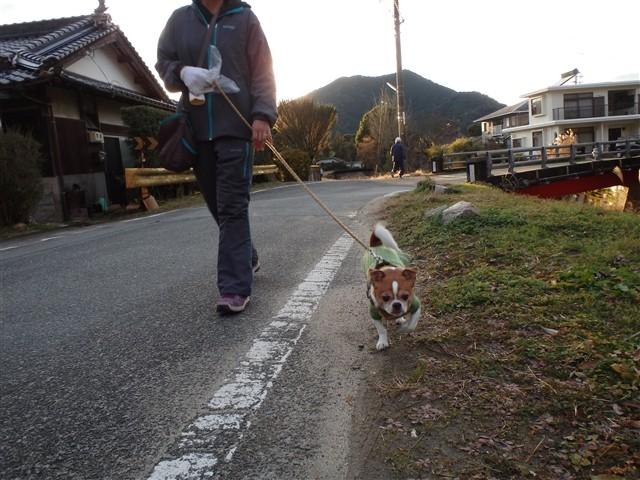 f:id:yasukazu01:20131218202021j:image