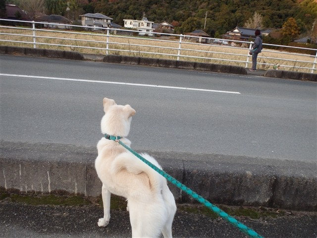 f:id:yasukazu01:20131218202821j:image
