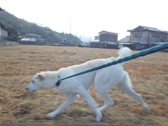 f:id:yasukazu01:20131222195457j:image