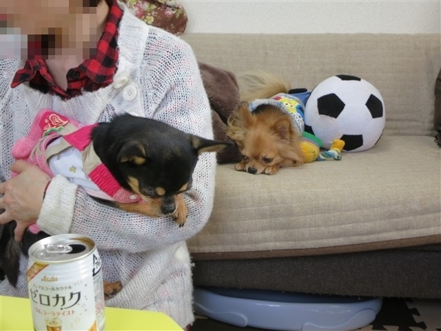f:id:yasukazu01:20131224224309j:image