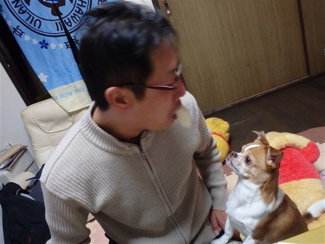 f:id:yasukazu01:20131230224220j:image