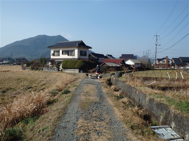 f:id:yasukazu01:20131231205403j:image