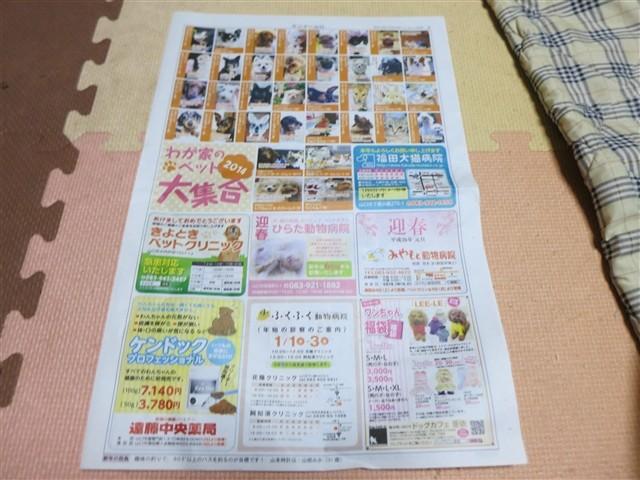 f:id:yasukazu01:20140101232322j:image