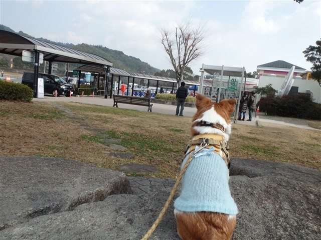 f:id:yasukazu01:20140106203159j:image