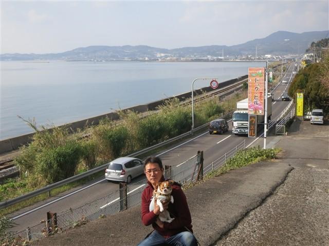 f:id:yasukazu01:20140106203745j:image