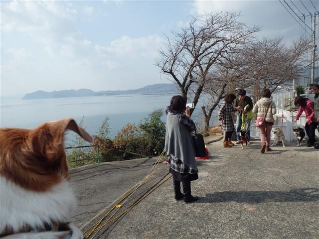 f:id:yasukazu01:20140106204026j:image