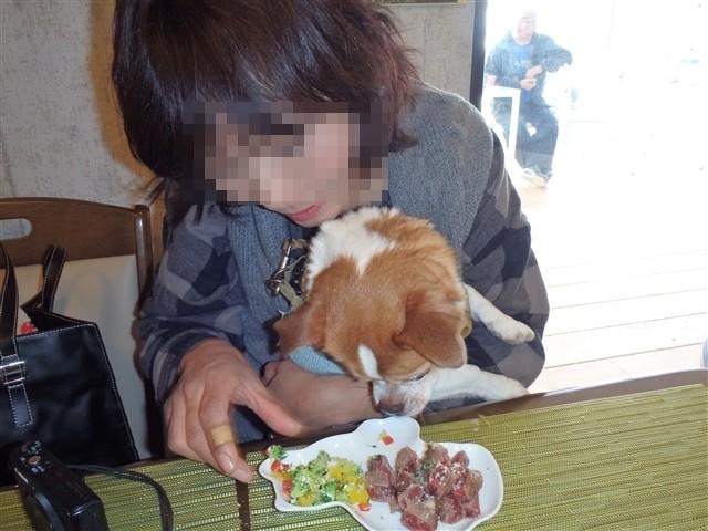 f:id:yasukazu01:20140107230409j:image