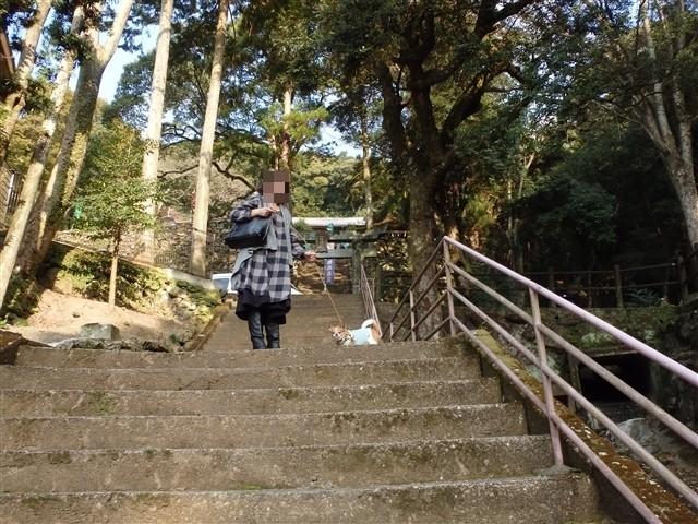 f:id:yasukazu01:20140108200135j:image