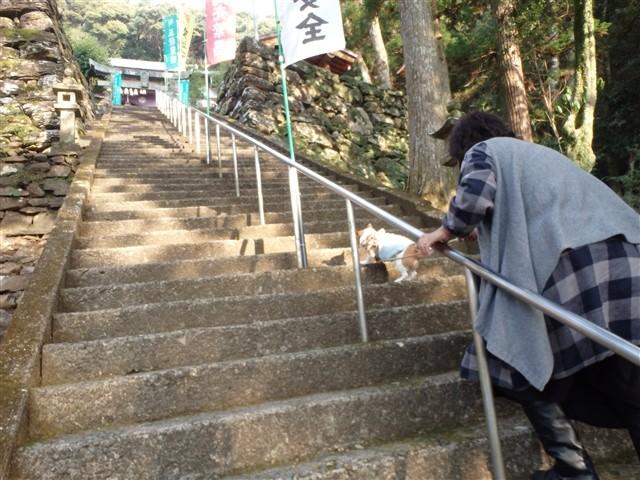 f:id:yasukazu01:20140108200351j:image