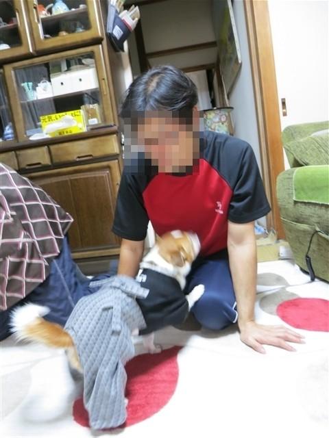 f:id:yasukazu01:20140108203124j:image