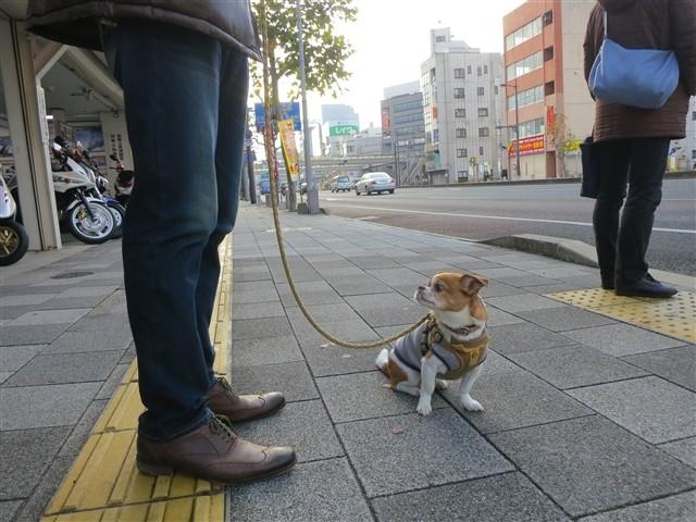 f:id:yasukazu01:20140110200543j:image