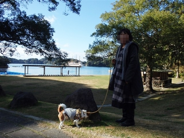 f:id:yasukazu01:20140111200045j:image
