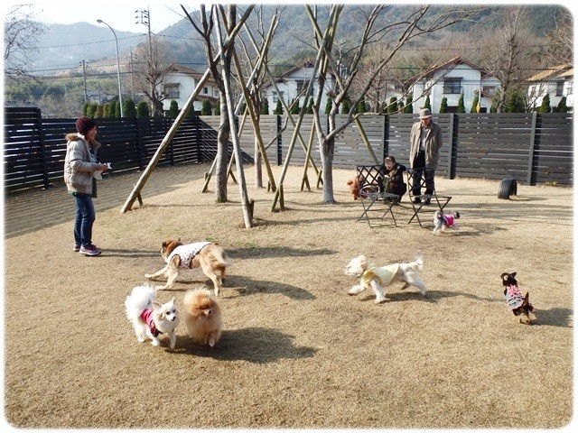 f:id:yasukazu01:20140113194642j:image