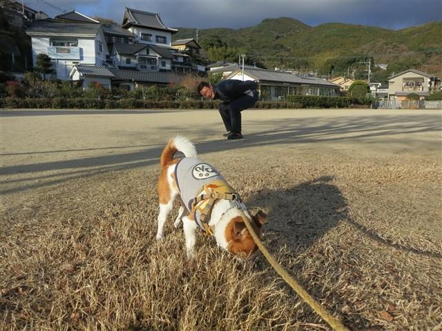 f:id:yasukazu01:20140113195302j:image